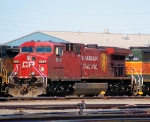 CP 8561